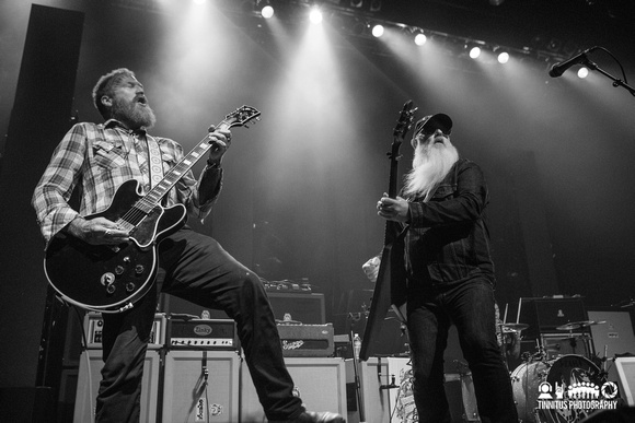 Eagles Of Death Metal in concert