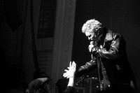 Billy Idol in concert